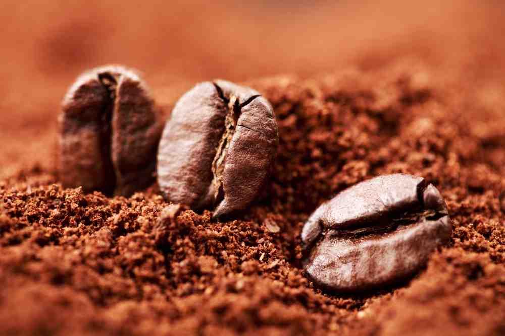 Combien de grains de café pour la tasse?