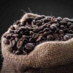 Comment choisir des grains de café de qualité ?