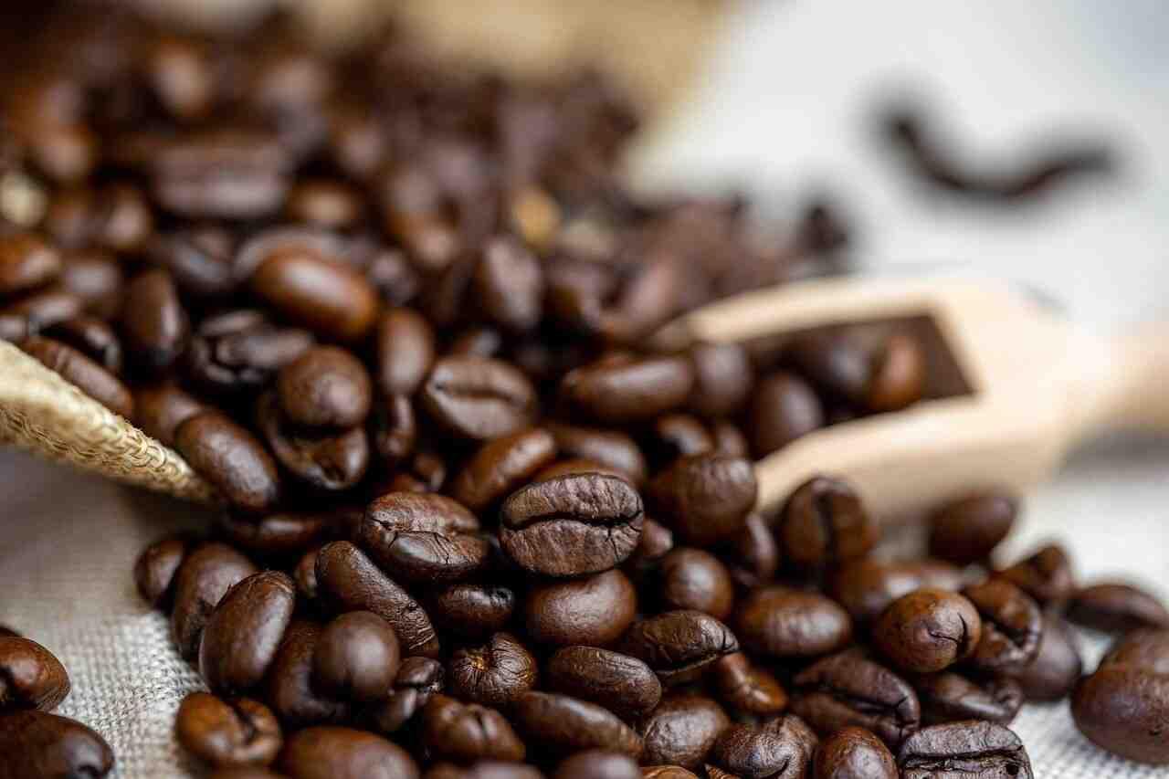 Comment choisir son café moulu?
