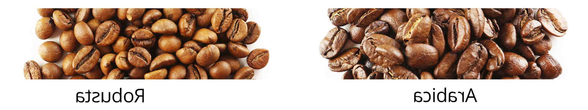 Comment faire un grain de cafe torrefacteur ?