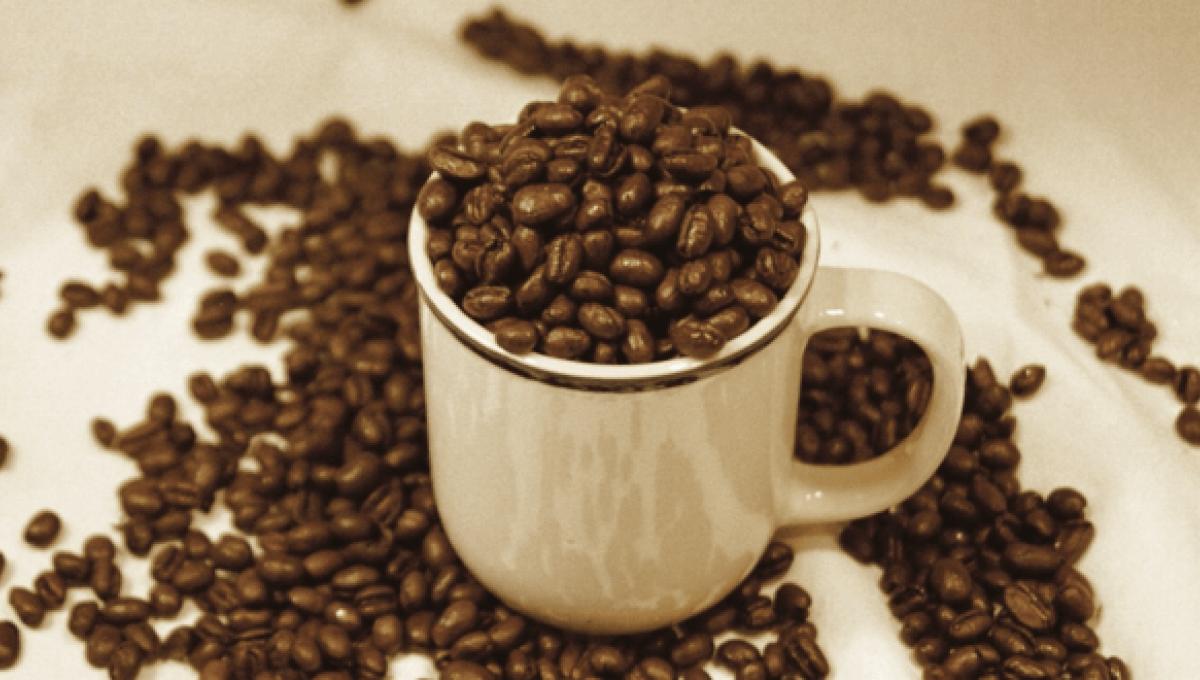Comment utiliser le café vert ?