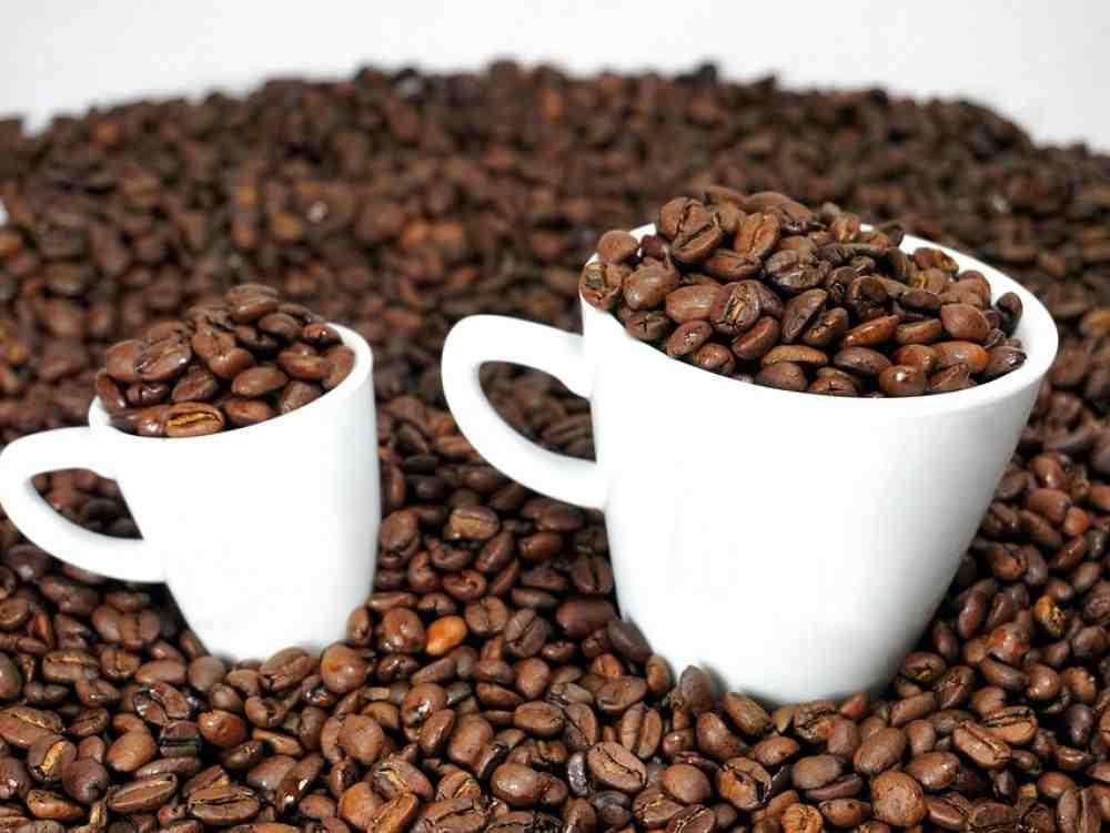 Le café est-il un pet?