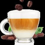 Quel café prenez vous ?