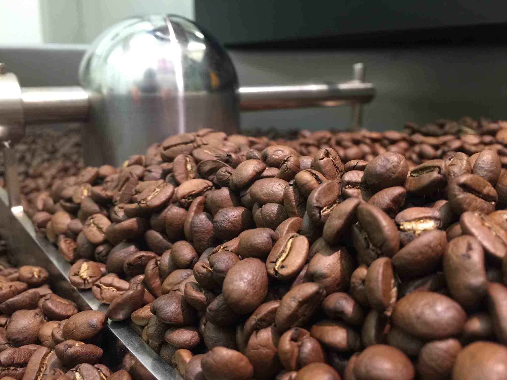 Quel est le café le moins amer?