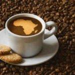 Quelle est la meilleure marque de café ?