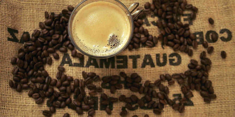 Qui a introduit le café en Europe?
