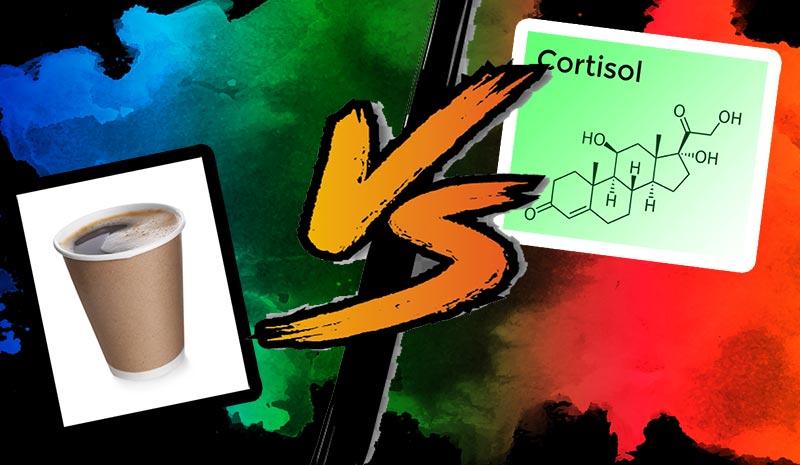 café  et cortisol le matin